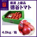 厳選 上級品[A003]市場直送便徳谷ト
