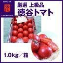 厳選 上級品[A-048]【市場直送便】徳谷トマト/1.0kg/元木青果/フルーツトマト/高