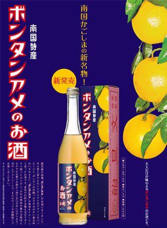 ボンタンアメのお酒 500mlの商品画像