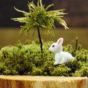 真っ白なウサギ ミニチュア ジオラマ 動物模型 苔テラリウム おもちゃ フィギュア