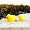 アヒルの親子 ミニチュア ジオラマ 動物模型 苔テラリウム おもちゃ フィギュア
