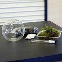 ボトルテラリウム 作成キット ミニサイズ10cm 苔セット 苔 初心者の方でもできる!