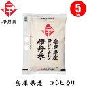 【お米】兵庫県産コシヒカリ 5kg 【おこめ】【伊丹米】