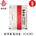 【お米】新潟県産魚沼コシヒカリ 5kg 【おこめ】【伊丹米】
