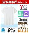 送料無料5枚セット YG ワイジー DRY&COOL ドライ COOLMAGIC クールマジック クルーネックTシャツ Mサイズ Lサイズ LLサイズ グンゼ GUNZE 涼感 通販 グンゼ GUNZE | グンゼ GUNZE グンゼ GUNZE グンゼ 02P27May16