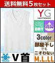 送料無料5枚セット YG ワイジー DRY&COOL ドライ...