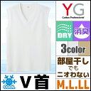 YG ワイジー DRY&COOL ドライ COOLMAGIC クールマジック Vネックスリーブレスシャツ Mサイズ Lサイズ LL グンゼ GUNZE メンズ インナー 涼感インナー クールインナー メンズインナー 大きいサイズ 夏用 涼しい 吸汗速乾 ブイネック 紳士 肌着 男性下着