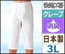 快適工房 クレープ 半ズボン下 前あき 3Lサイズ 日本製 グンゼ GUNZE ステテコ すててこ 通販 ズボン下 | メンズ 紳士 男性