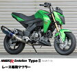 BEET 1002-B55-BL NASSERT-R Evolution Type 2 フルエキゾースト レーシングマフラー ブルーチタン Kawasaki Z125 Pro