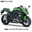 【あす楽】Kawasaki純正 J5012-0002-51P カワサキ タッチアップペイント(ベース・トップ2本組) キャンディライムグリーン('15年)