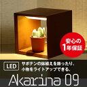 ショッピング観葉植物 LED家庭用植物鑑賞用器【Akarina09ブラウン/灯菜】サボテンにぴったり