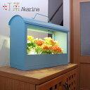 ショッピングプランター LED水耕栽培キット Akarina05ブルー/灯菜 室内栽培 プランター サラダ菜タネ付き