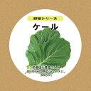 ショッピングプランター 灯菜 Akarina 水耕栽培用ケール種子セット タネ約2g スポンジ30個 液体肥料50ml MASS11
