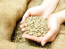 【生豆販売】【送料無料】新豆★LCFリントンマンデリン インドネシア/リントン・ニフタ地区 200g|スペシャルティコーヒー|コーヒー|珈琲|コーヒー豆|珈琲豆|LCF Mandhering|INDONESIA|LCFマンデリン