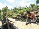 新豆★ケニア キアンブ カラツファクトリー フレンチロースト 200g|KENYA|kenya|SL34|SL28|深煎り|ストロング|【組み合わせ自由!コーヒー豆800g以上ご注文で送料無料】