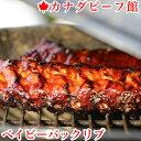 塊肉 BBQ お花見 パーティー キャンプ グランピング BBQ お花見 パーティー 食材 熟成