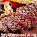 ステーキ肉 サーロイン ステーキ カナダビーフ館 熟成肉 お...