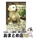 【中古】 犬と私の10の約束 / 川口 晴 / 文藝春秋 [単行本]【宅配便出荷】