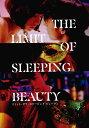 【映画パンフレット】 『THE LIMIT OF SLEEPING BEAUTY−リミット・ オブ・スリーピング ビューティ』 出演:桜井ユキ.成田凌.高橋一生