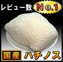 【国産】ハチノス・はちのす・1kg(トリッパ・煮込み・スープ用)