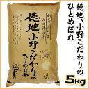 【山口県産米】【新米】〔市川精米店〕徳地、小野こだわりのひとめぼれ5kg