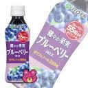 伊藤園 健やか果実 ブルーベリーMIX PET 265g×24本入