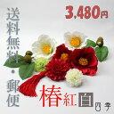 椿 紅白 髪飾り 8777 Uピン10点 成人式 卒業式 結婚式 はかま タッセル かすみ草 【送料無料】 K_0321