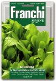 - 蔬菜种子公司 - 意大利 - Rifuchikori TBFOGLIE LARGHE Franchi;[【イタリアの野菜の種】 Franchi社 【リーフチコリー・T.B.FOGLIE LARGHE】]
