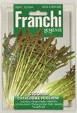 【イタリアの野菜の種】 Franchi社 リーフチコリー(カタローニャタイプ)・PUGLIESE