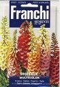 【イタリアの草花の種】 FRANCHI社 ジギタリス マルチカラー31720