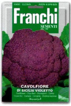 NEW【イタリアの野菜の種】Franchi社 カリフラワーDI SICILIA VIOLETTO バイオレットシチリア