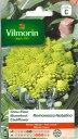 VILMORIN社-フランス野菜の種 カリフラワー ロマネスコ Romanesco Natalino-中生種V-839