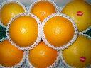 オレンジ&グレープフルーツ2