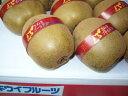 香川産「さぬきゴールド」4Lサイズ16玉入り