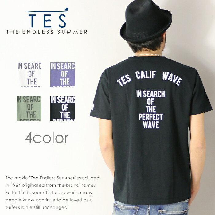 【THE ENDLESS SUMMER ザエンドレスサマー】【TES テス】 tシャツ 半袖 ロゴ 定番 サーフ メンズ men's FH-8574311