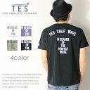 【2018年 春夏新作】【THE ENDLESS SUMMER ザエンドレスサマー】【TES テス】 tシャツ 半袖 ロゴ 定番 サーフ メンズ men's FH-8574311