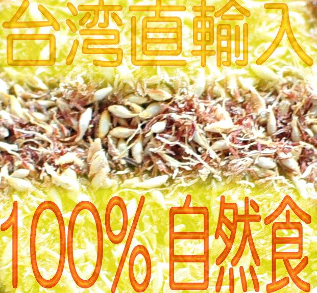 【送料無料】業務用・台湾産愛玉子3000gレシ...の紹介画像3