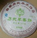 Shenpu357