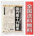 16kokumai-gyomuyou-5