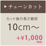 チェーンカット 【最短10cmから】【05P01Mar15】