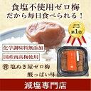 【今年の新梅登場! 食塩ゼロ! 】塩ぬき屋 食塩不使用 ゼロ梅 (酸っぱい味) 200g 国産梅【