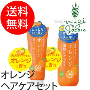 オーガニック オレンジ シャンプー