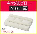 布団のイワタ IWATA キャメルピロー【5.0センチ厚】 枕 ふとん ベッド 京都