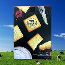 【富士山ラポールラング】ジャージーミルク&ゴルゴンゾーラチーズクッキー 18枚入り【楽ギフ_包装】【楽ギフ_のし】【camp】
