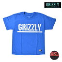 SALE セール 20%OFF キッズ 半袖 Tシャツ GRIZZLY グリズリー STAMP YOUTH S/S TEE VIGR181Y2 FX1 C27
