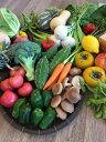 有機栽培、減農薬野菜詰め合わせ14品 宮崎県産