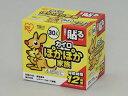 IRIS OHYAMA/アイリスオーヤマ PKN-30HR ぽかぽか家族 貼るレギュラー (30個入)