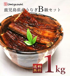 <strong>国産</strong><strong>うなぎ</strong> <strong>訳あり</strong> 1kg B級品 敬老の日 お取り寄せ ギフト 蒲焼き 丑の日 鹿児島県産 送料無料 高級鰻 生産量全国1位 特賞 <strong>国産</strong><strong>うなぎ</strong>蒲焼き