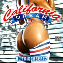 藝人名: T - DJ TRIGGABEATZ / CALIFORNIA DREAM VOL.3