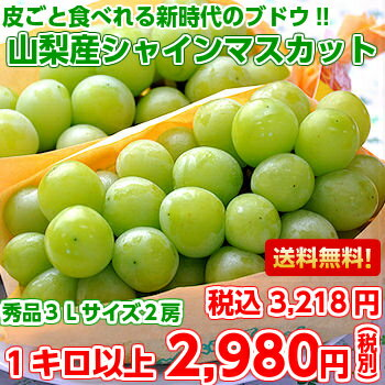 Grapes can be eaten skin and ♪ h. products size from Yamanashi 大ぶり shine Muscat 3 L 1 kg (with 2 bunches)